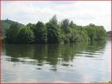 """<font color=""""blue""""><font size=""""+1""""> île de Franche Garenne, la Meuse, Hermalle-sous-Argenteau</font></font>"""